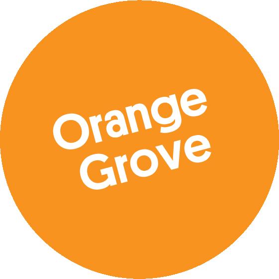 Natural Shampoo – Orange Grove 250 ml von soeder*